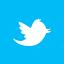 Twitter social tile